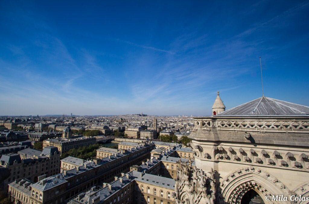 Vue depuis le Printemps - Paris