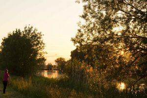 Saint-Jean-de-Losne - Est de la France - coucher de soleil