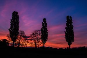 Sunset dans l'est de la France