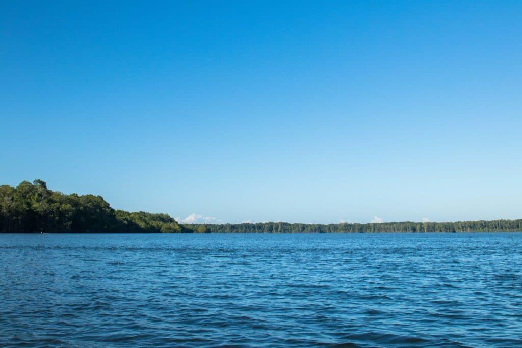 Rivière Pedregal - Golfe de Chiriqui