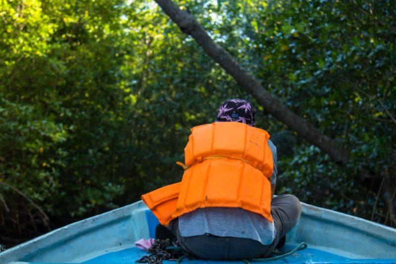 Mangroves - Golfe de ChiriquiMangroves - Golfe de Chiriqui