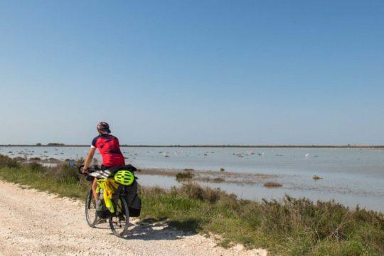 La Camargue à vélo