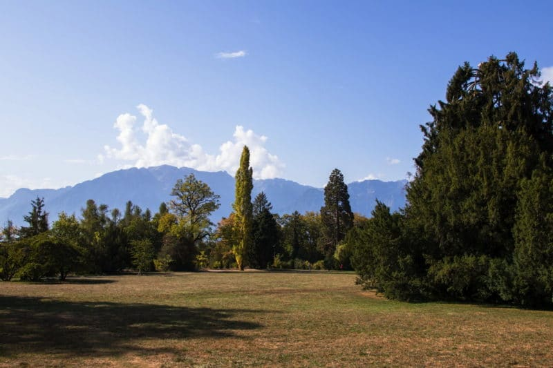 Parc Chaplin