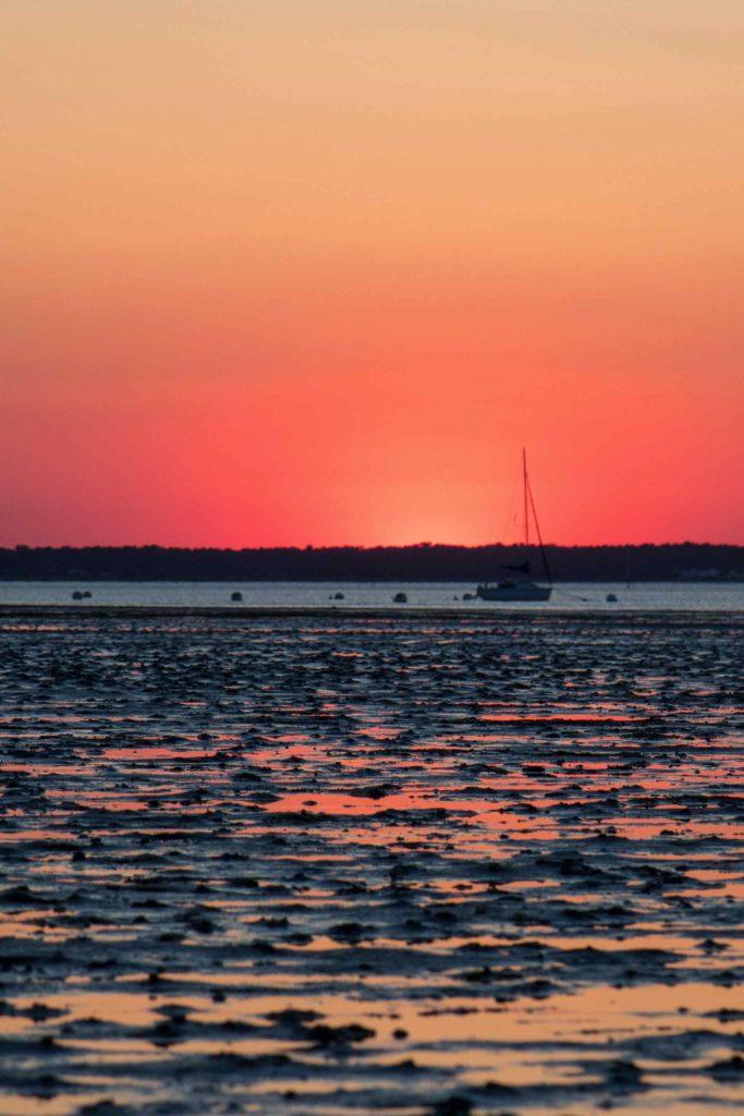 Ronce-les-bains - coucher de soleil - marais