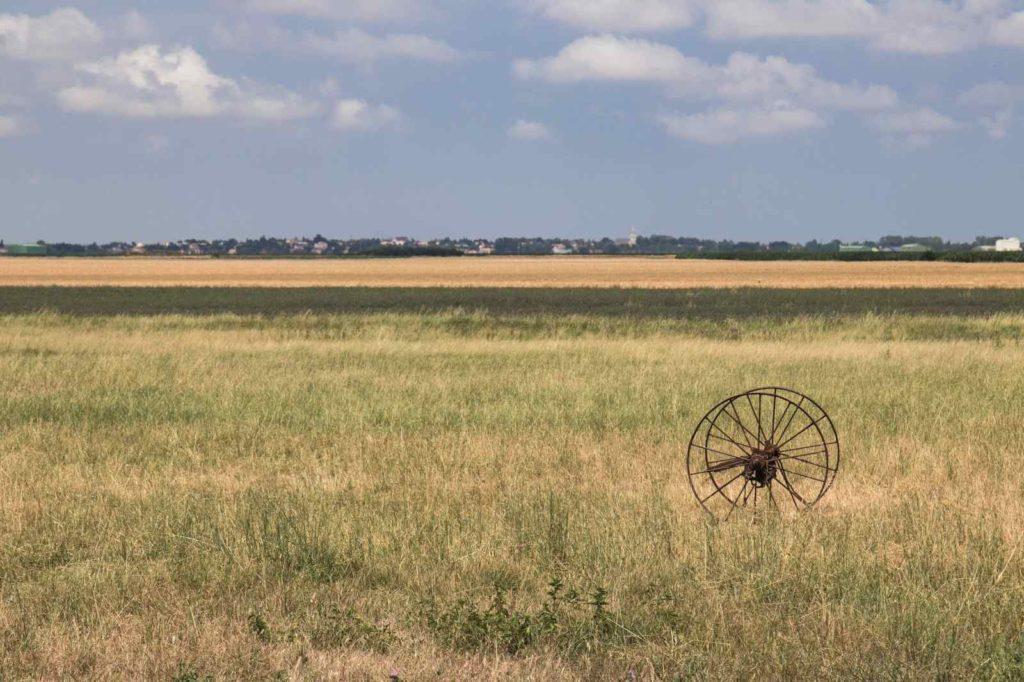 Marais poitevin côtier - Vendée