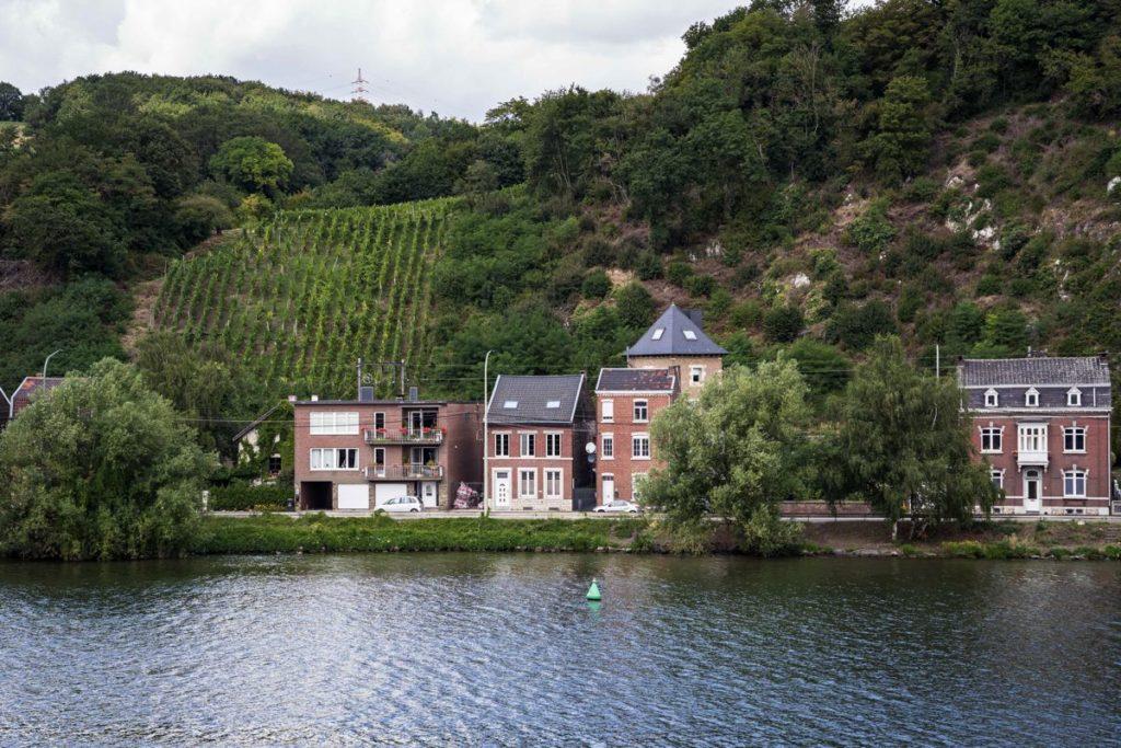 Vignes - Meuse à vélo