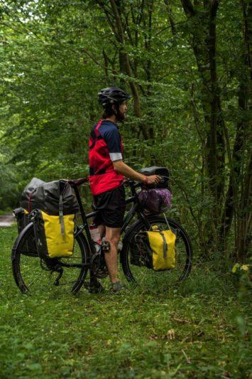 Voie Verte de l'Avesnois - forêt