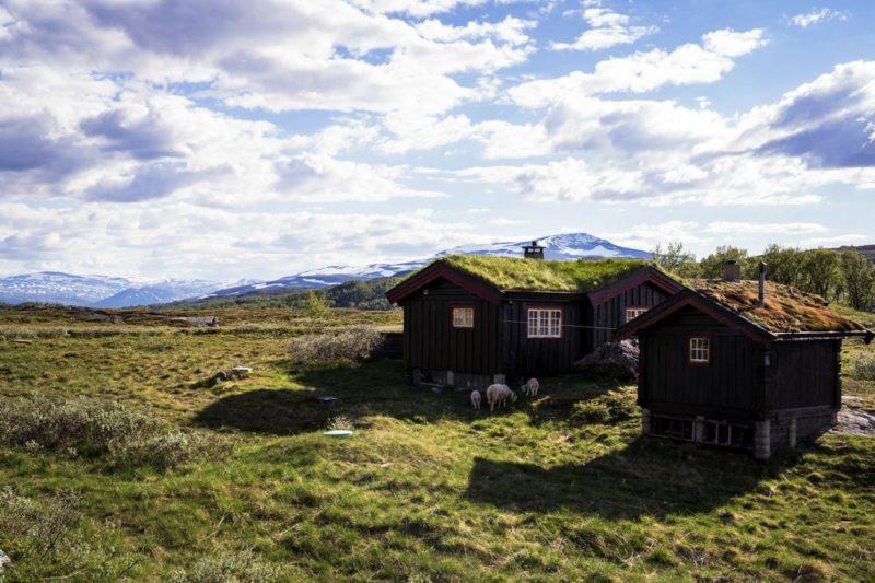 maison norvège