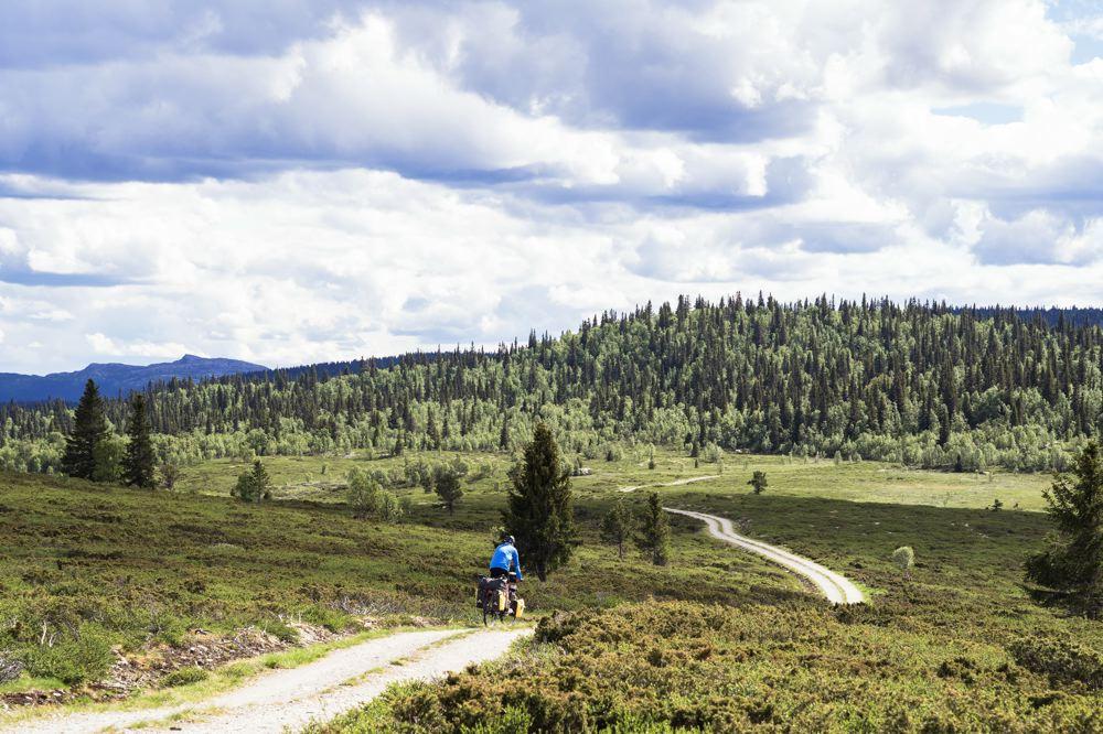 paysages arrière-pays Norvège à vélo