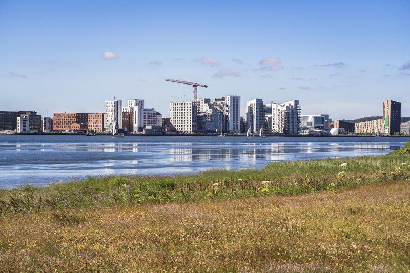 Aalborg - point de vue