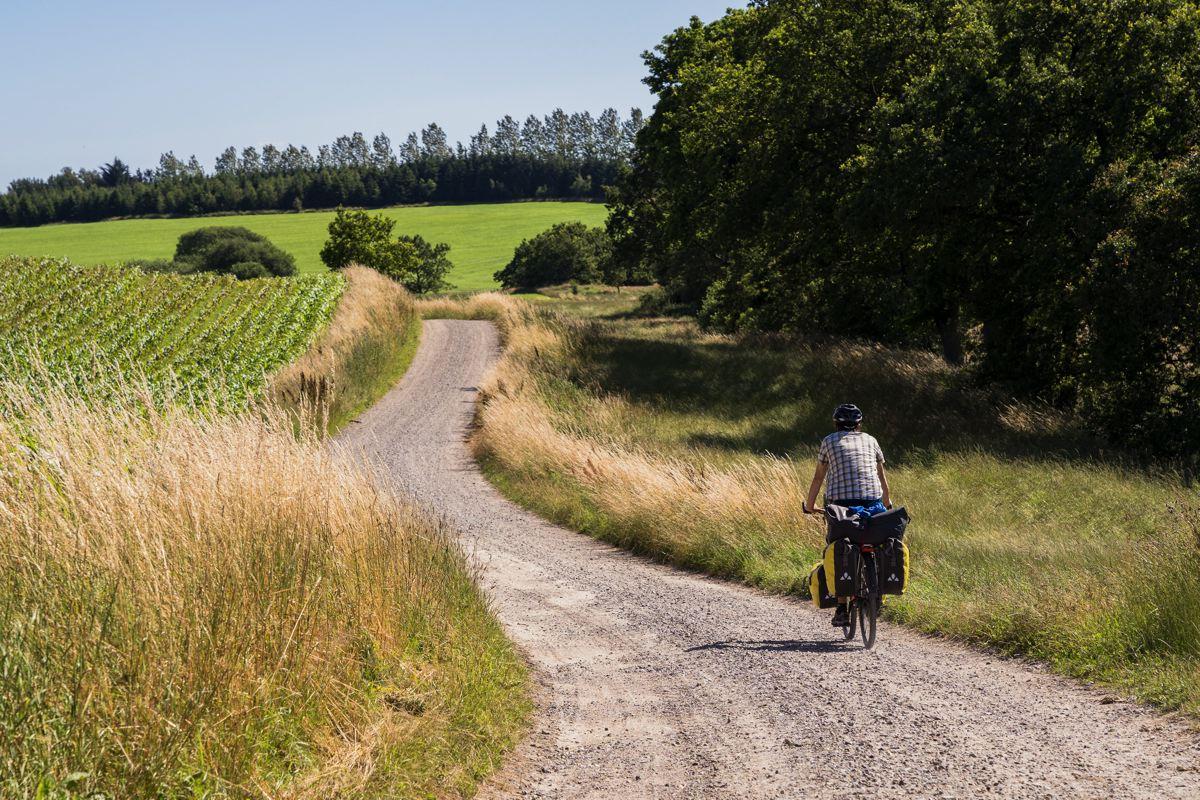 Le Danemark à vélo via L'EuroVelo 3