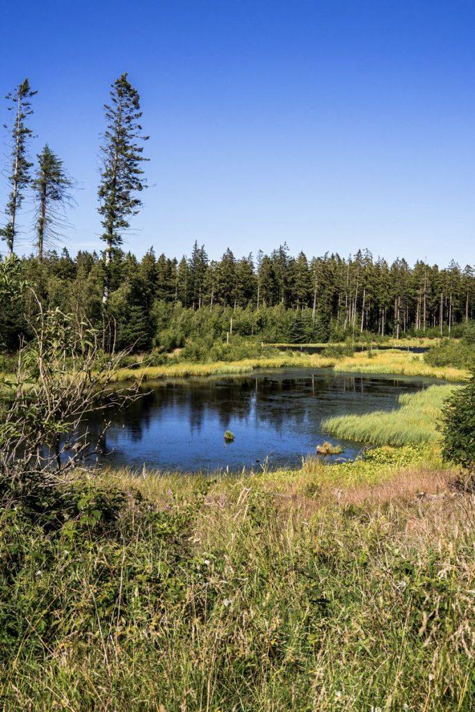 espaces naturels Danemark - EuroVelo 3