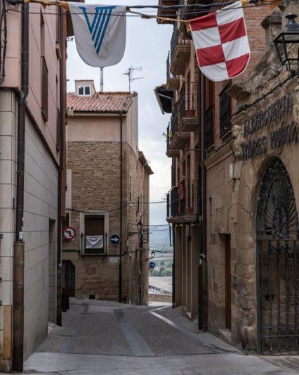 Village sur Camino Francés - Logrono