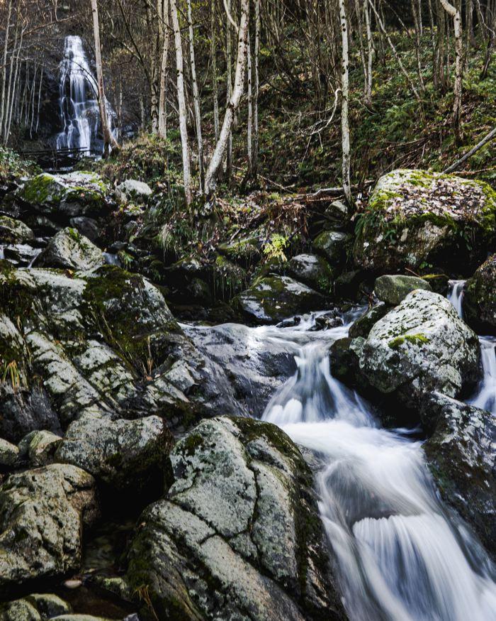 Vallée Pesio