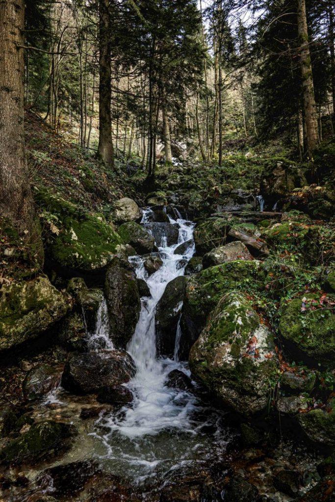 Chute d'eau - Vallée Pesio - Province de Cuneo