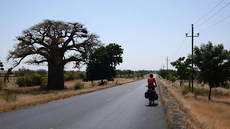 Des Routes et des Hommes - Sénégal