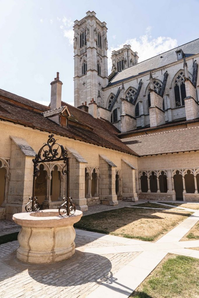 Cathédrale + cloître, chatons sur Saône