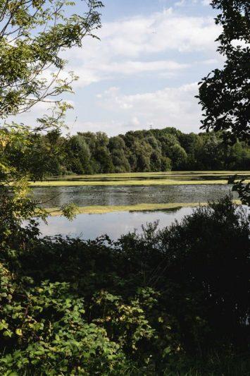 L'étang de haut sur la véloroute de la vallée de la somme