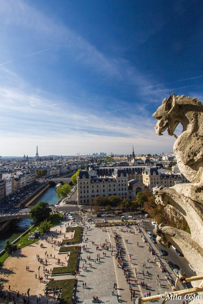 Point de vue du haut des tours de notre dame de Paris