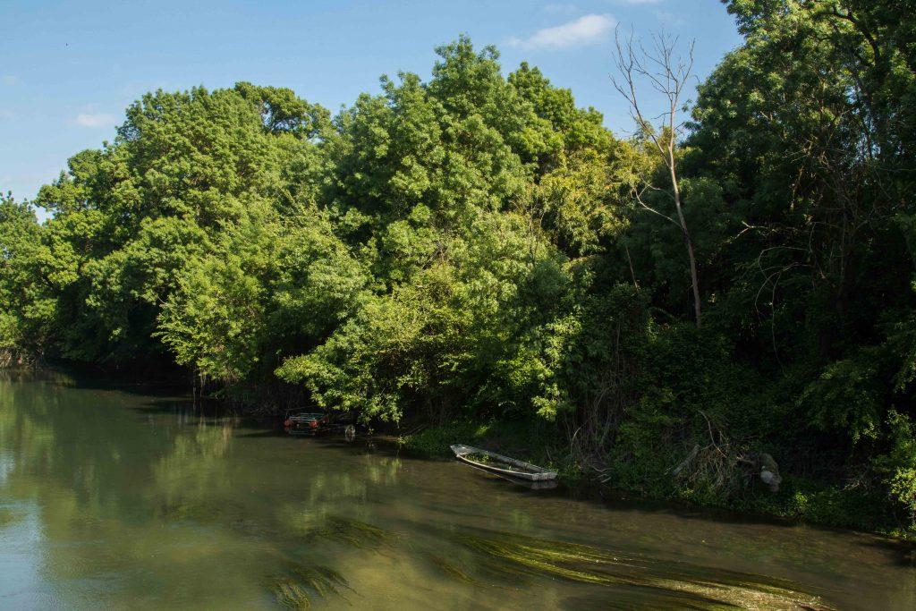 Nature - Le cher - parcours de la Loire à vélo