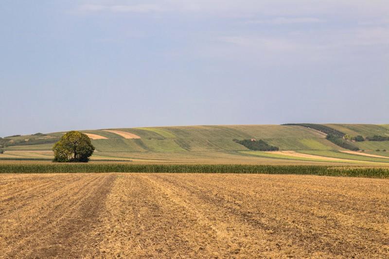paysage Serbie - eurovélo 6