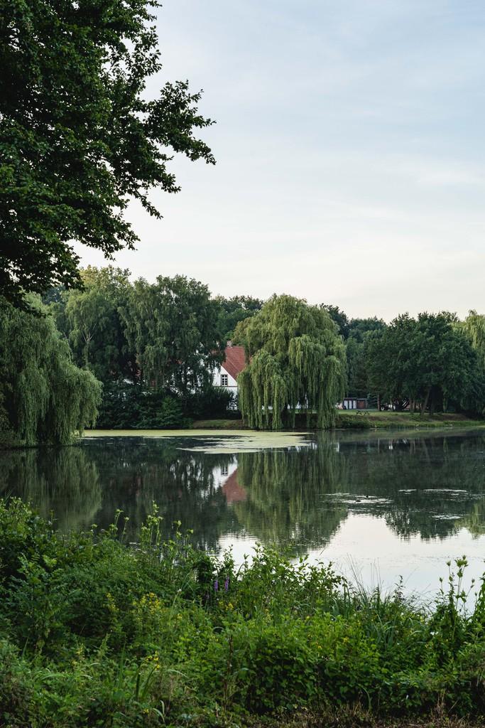 Vue depuis l'EV3 en Allemagne