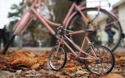 Quel cadre choisir pour son vélo de voyage ?