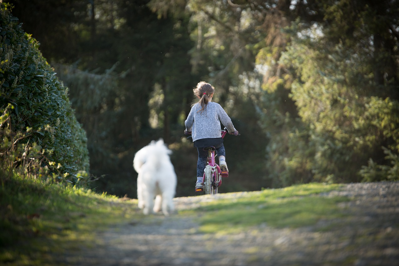 Petite fille à vélo coursée par un chien